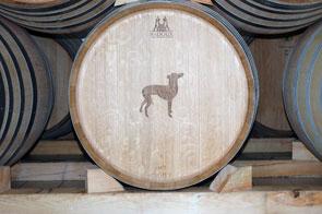 Elevage des vins blanc 2007